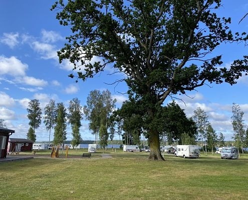 View from the seasonal camping pitches