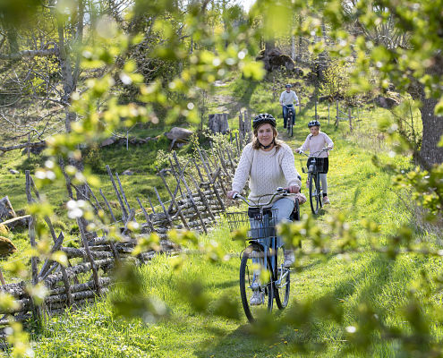 Cycling in the movie landscape Småland as an activity