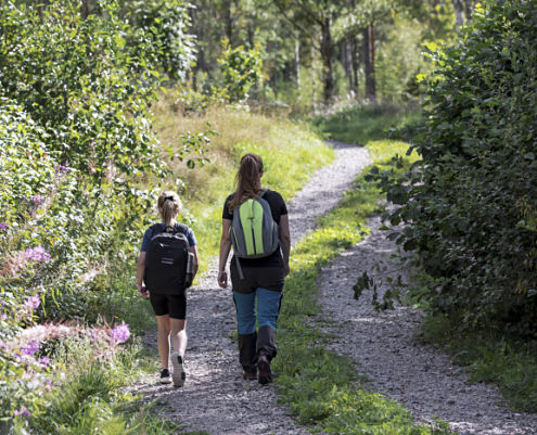 Småland's hiking trails in Hultsfred